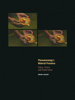 Phenomenology's Material Presence: Video, Vision and Experience